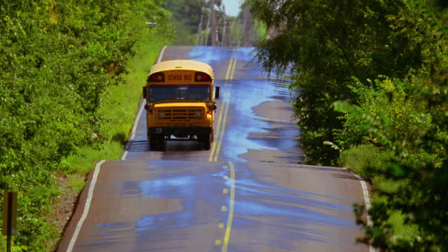 wide shot school bus driving down hilly road with trees - land vehicle stock videos & royalty-free footage