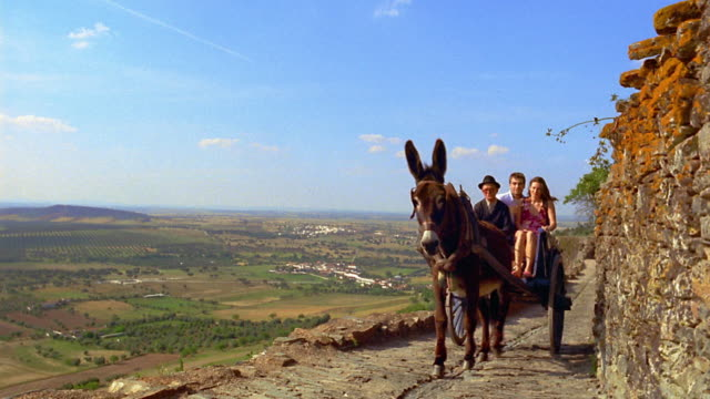Wide shot senior man driving tourist couple in donkey cart on road / countryside in background / Monsaraz, Portugal