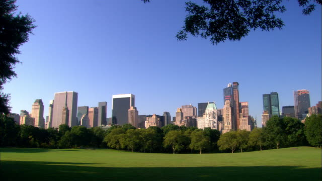 wide shot sheeps meadow in central park with skyline in background / nyc - sheep meadow central park stock videos and b-roll footage