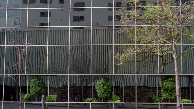 wide shot side of office building with mirrored windows reflection of other building, and tree/ charleston, south carolina - gebäudefront stock-videos und b-roll-filmmaterial
