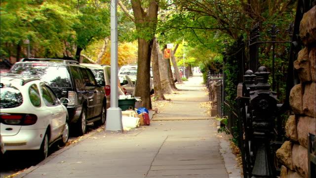 wide shot sidewalk of treelined street/ brooklyn, new york - rinnsteinkante stock-videos und b-roll-filmmaterial