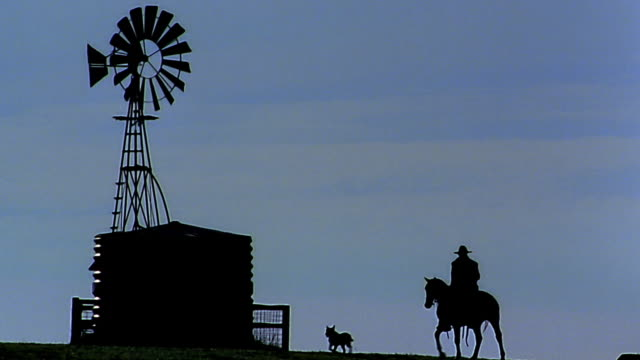 wide shot silhouetted cowboy on horseback with dog and herd - ranch stock videos & royalty-free footage