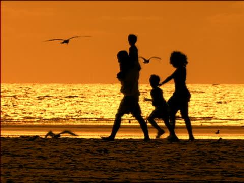 vídeos y material grabado en eventos de stock de wide shot silhouettes of family walking across beach at dusk with boy on man's shoulders / miami, florida - grupo mediano de animales