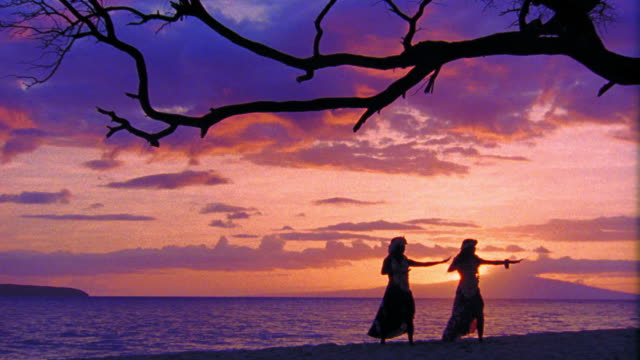 purple wide shot silhouettes of two female hula dancers dancing in unison by tree / ocean in background / hawaii - pacific islander background stock videos & royalty-free footage