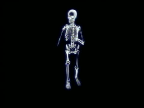cgi wide shot skeleton running in place + facing camera with black background - biomedizinische illustration stock-videos und b-roll-filmmaterial