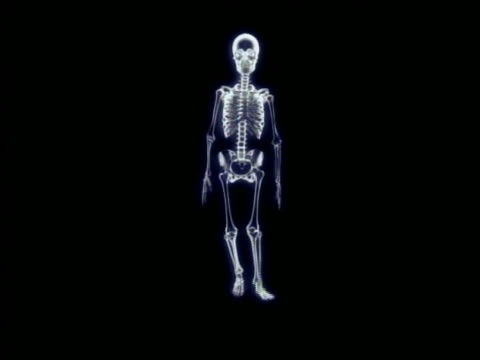 cgi wide shot skeleton walking in place + facing camera with black background - biomedizinische illustration stock-videos und b-roll-filmmaterial