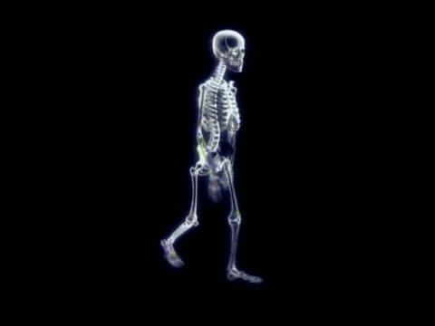 cgi wide shot skeleton walking in place with black background - human skeleton stock videos & royalty-free footage