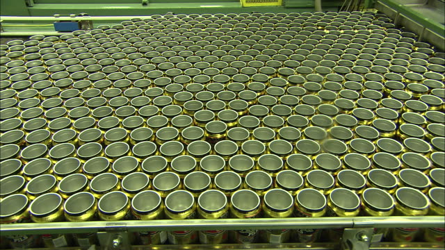 wide shot static - hundreds of aluminum beverage cans move along a conveyor in a factory /  colorado, united states - wide stock videos and b-roll footage