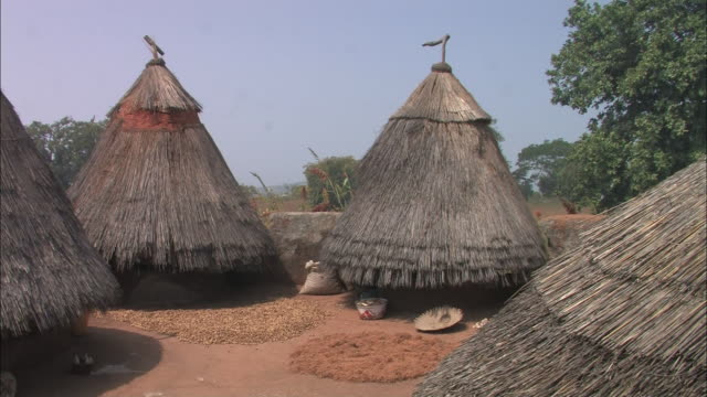 Wide Shot static - Thatched roofs cover huts in a village in Benin. / Benin