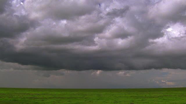 vidéos et rushes de wide shot storm clouds hovering over savannah / serengeti national park, tanzania - ciel menaçant