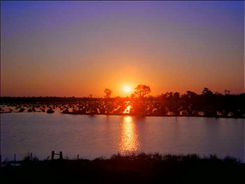 wide shot swamp at sunset / zoom in to sun / penthanal, mato grosso, brazil - romantische stimmung stock-videos und b-roll-filmmaterial