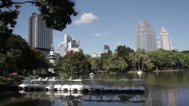 stockvideo's en b-roll-footage met wide shot swanshaped pedal boats sit in a row on lumpini lake at lumpini park in bangkok wide shot joggers jog along a road in lumpini park wide shot... - waterfiets
