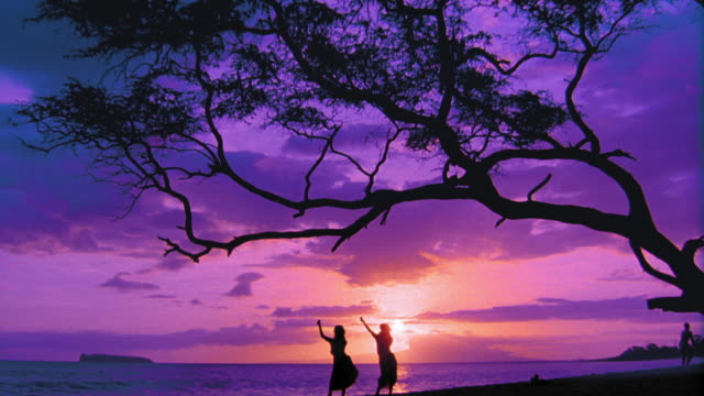 purple wide shot tilt down silhouettes of two female hula dancers dancing in unison  / ocean in background / hawaii - pacific islander background stock videos & royalty-free footage