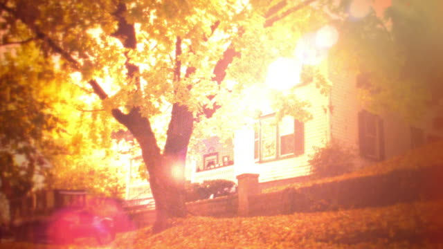 reenactment orange wide shot tilt up from fallen leaves + 1920s car (model t?) to house + tree in autumn / intense flare - 1925 stock videos & royalty-free footage