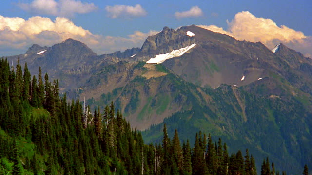 wide shot time lapse clouds in blue sky behind mountains / pine forest on mountainside in foreground / olympic peninsula - wide stock videos and b-roll footage