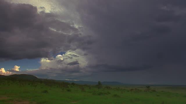 vidéos et rushes de wide shot time lapse storm clouds moving over plains / serengeti national park, tanzania, africa - storm cloud