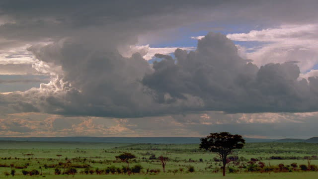 wide shot time lapse storm clouds moving over plains / tanzania, africa - plain stock videos & royalty-free footage
