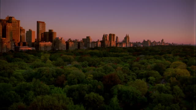 Wide shot time lapse sunrise over Central Park trees and bordering Manhattan buildings / NYC