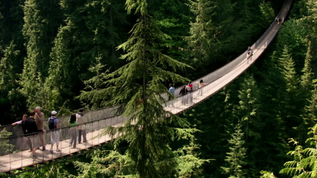 vídeos y material grabado en eventos de stock de wide shot tourists crossing capilano suspension bridge in forest/ vancouver, british columbia, canada - puente colgante