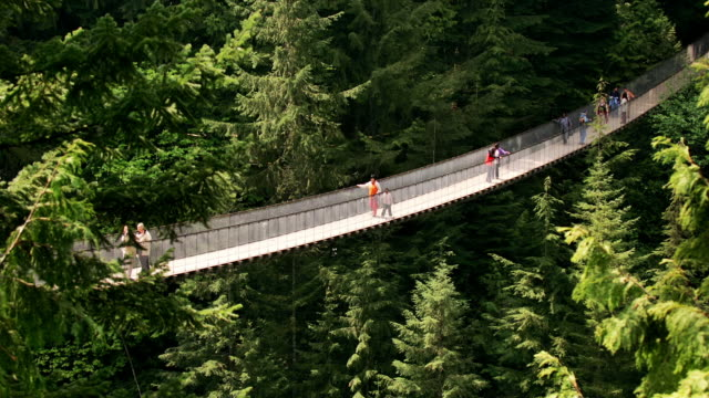 Wide shot Tourists crossing Capilano Suspension Bridge in forest/ Vancouver, British Columbia, Canada
