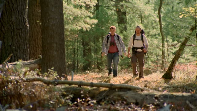 wide shot two men hiking through woods wearing backpacks / pushing one another playfully - ökotourismus stock-videos und b-roll-filmmaterial