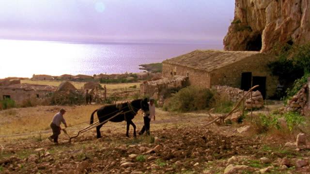 wide shot two men plowing field with mule / water in background / custonaci, sicily - rustic stock videos & royalty-free footage