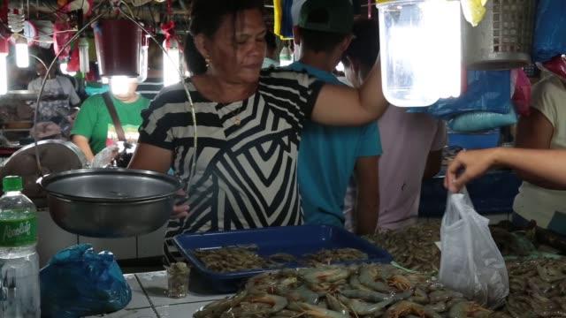 stockvideo's en b-roll-footage met wide shot vendors arrange seafood for sale as customers walk past at the old market in puerto princesa palawan medium shot a vendor weighs fresh... - steurgarnaal