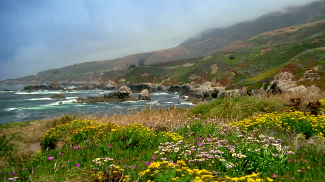 Wide shot view of inlet off rocky coastline  / Carmel, California