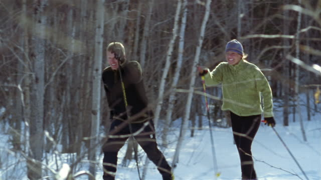 wide shot view through bare branches of man and woman cross-country skiing - ski jacket stock videos and b-roll footage