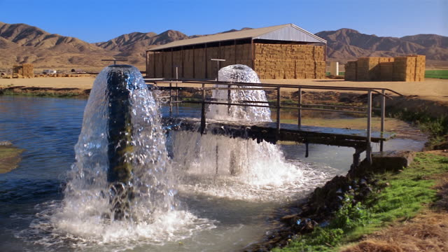wide shot water flowing out of pumps in pond on farm / mountains in background - water pump stock videos & royalty-free footage