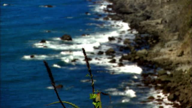 wide shot waves crashing on rocky coast/ san simeon, california, usa - ragged point stock videos and b-roll footage