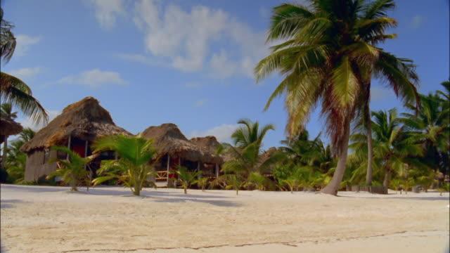 vídeos y material grabado en eventos de stock de wide shot wind blowing palms in front of grass huts on beach / ambergris caye, belize - techo de paja