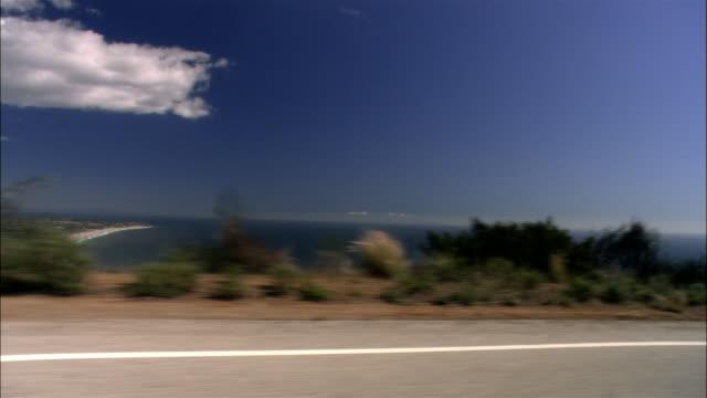 vidéos et rushes de wide shot wind blowing tree and grass in front of ocean horizon/ malibu, california - océan pacifique nord