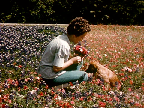stockvideo's en b-roll-footage met 1963 wide shot woman picking flowers in field with puppy/ texas/ audio - 1963