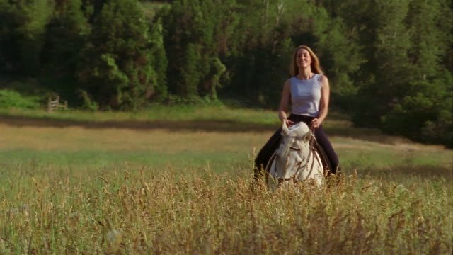 wide shot woman riding horse through golden meadow/ trees and mountain in bg / carbondale, colorado - alm stock-videos und b-roll-filmmaterial