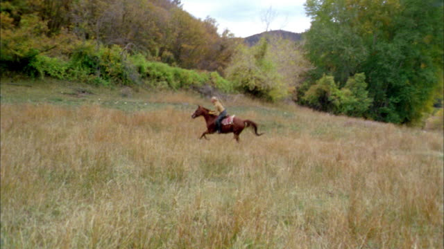 wide shot woman riding on horseback through grassy field - recreational horse riding stock videos & royalty-free footage