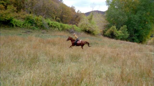 wide shot woman riding on horseback through grassy field - herbivorous stock videos & royalty-free footage