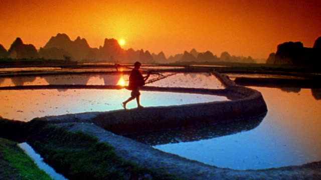 wide shot worker walking along rice paddy and carrying farm tool with orange sun, hills in background / yang-shu, china - rice paddy stock videos and b-roll footage