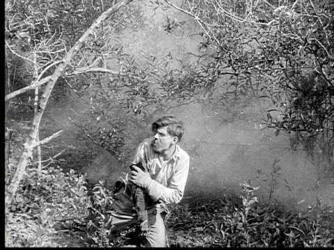 1913 reenactment b/w wide shot wounded man hiding in bushes during civil war battle reenactment / usa  - wounded stock videos & royalty-free footage