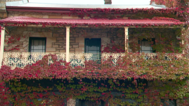 wide shots of upstairs verandah balcony of old sandstone cottage covered in red and green ivy wrought iron railing and bull nose iron awning / tilt... - awning stock videos & royalty-free footage