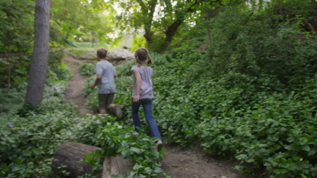 wide slow motion panning shot of boy and girl running through woods / springville, utah, united states - springville utah stock-videos und b-roll-filmmaterial