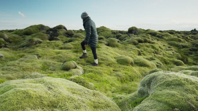 Wide slow motion panning shot of woman walking then laying in mossy landscape / Iceland