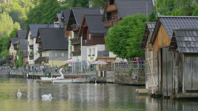 wide slow motion shot of ducks and people at waterfront / hallstatt, austria - animal representation stock videos & royalty-free footage