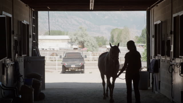 wide slow motion shot of girl leading horse into stable / lehi, utah, united states - lehi stock videos & royalty-free footage