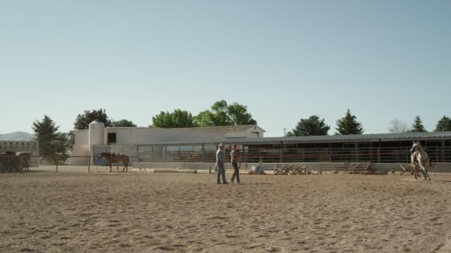 wide slow motion shot of man watching girl running horse in circle / lehi, utah, united states - lehi video stock e b–roll