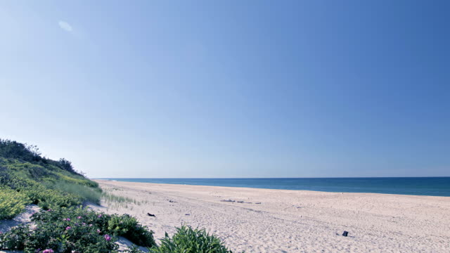 Wide, static beach scene with blue sky, sand, sea water, waves. Perfect scene