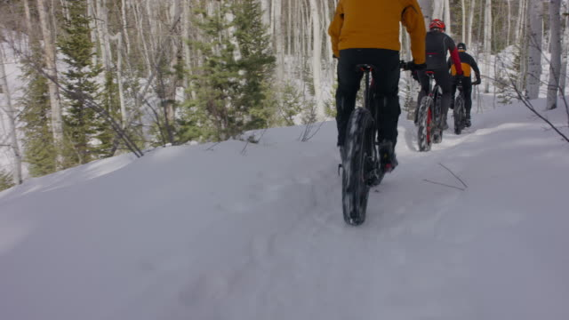 wide tracking shot of friends riding fat bikes in forest / american fork canyon, utah, united states - american fork canyon bildbanksvideor och videomaterial från bakom kulisserna