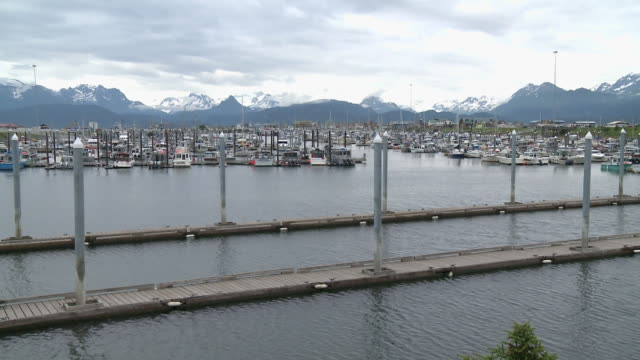 """wide view of boats in homer boat harbor, snow capped mountains of kachemak bay state park and wilderness park in background, homer spit, homer, kenai peninsula, alaska."" - homer alaska stock videos & royalty-free footage"