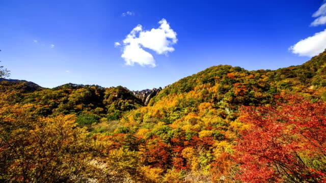 vídeos de stock, filmes e b-roll de wide view of fall colored mt. seoraksan - ponto de referência natural