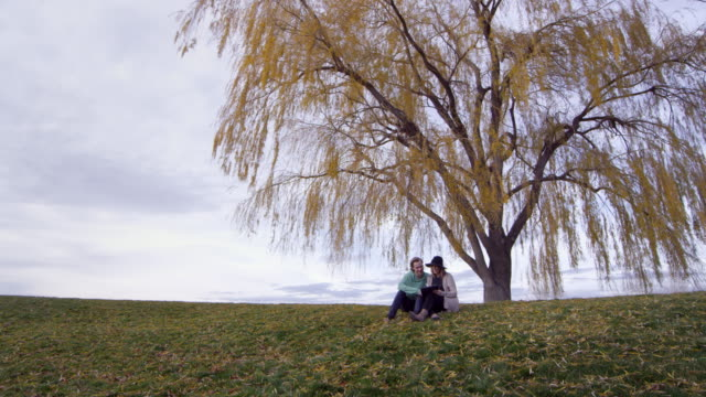 Wide view of goldend tree as two people sit under it
